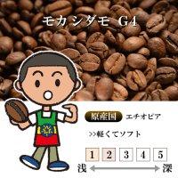 モカシダモ G4 [自家焙煎珈琲豆]